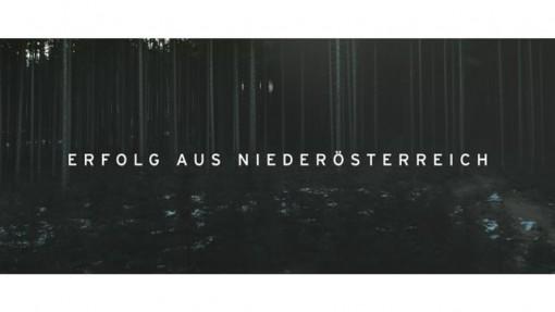 Erfolg aus Niederösterreich