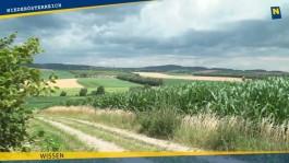 60 Jahre Bodenschutz in Niederösterreich